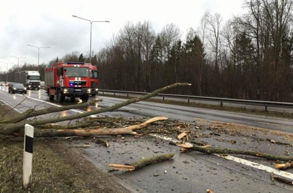 Ugniagesiai gelbėtojai įspėja: šalyje siautėja smarkus vėjas