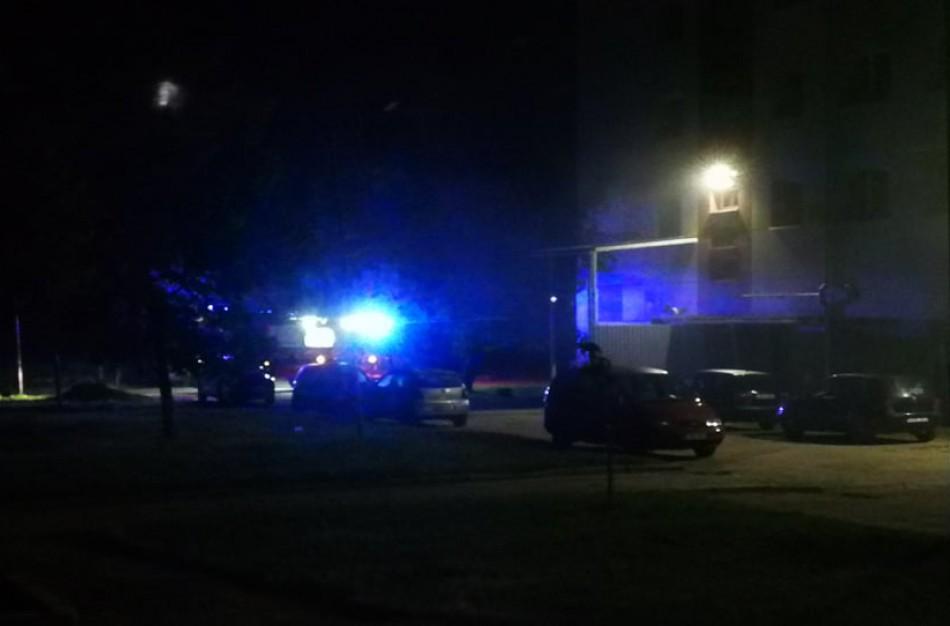 Ugniagesius gelbėtojus ant kojų sukėlė gaisras konteineryje