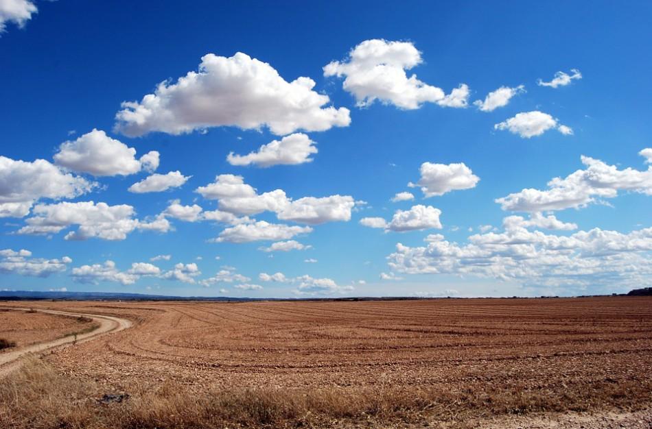 Šiandien minima tarptautinė švaraus oro diena
