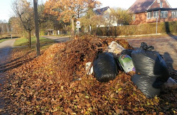 Veriasi sena piktžaizdė – privačių sklypų žaliosios atliekos nugula viešose vietose