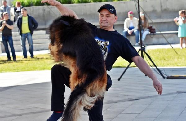 """""""Transachemos"""" darbuotojui paklūsta net aršiausi šunys"""