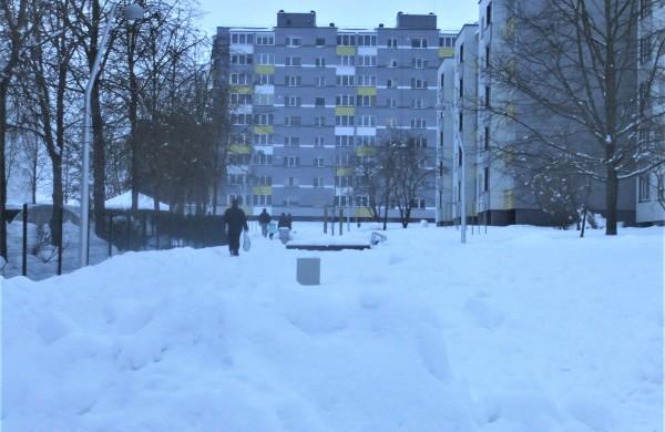 Iš kai kurių vietų pradedamas išvežinėti perteklinis sniegas