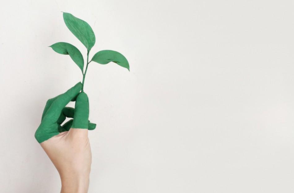 ES valstybių tyrimas parodė, kad beveik pusė žaliųjų teiginių nepagrįsti