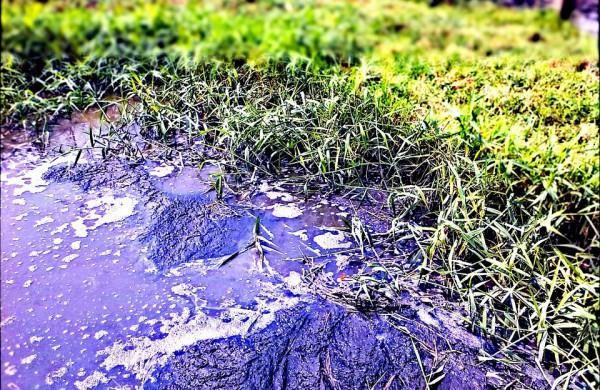 Jonavos upelyje Vijūnėlė pastebėti naftos produktų teršalai