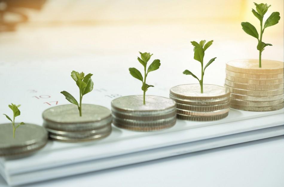 Pensijų fondai 2020 m.: augo dalyvių turtas ir skaičius