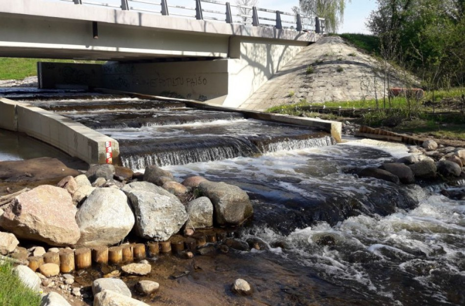 Nuo balandžio pirmosios privalu užtikrinti sąlygas žuvims neršti ir migruoti