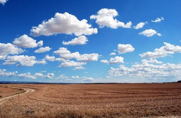 Žemės ūkio naudmenų ir pasėlių deklaravimas – kas keičiasi?