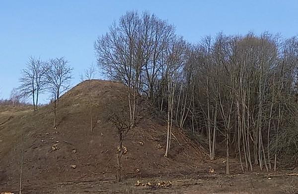 Sutvarkytas Milžinų kalnas Jonavos rajone