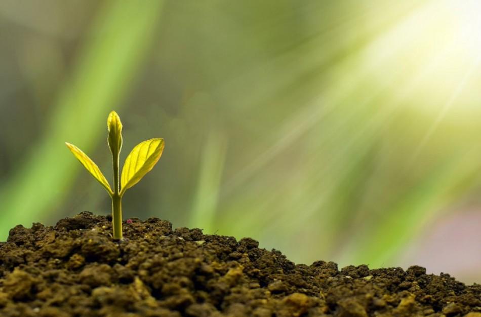 Geros žinios ekologiškai ūkininkaujantiems