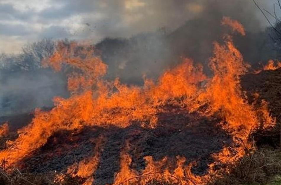"""""""Įsibėgėja"""" sausos žolės deginimas, primenama – tai laikoma piktybiniu nusikaltimu"""