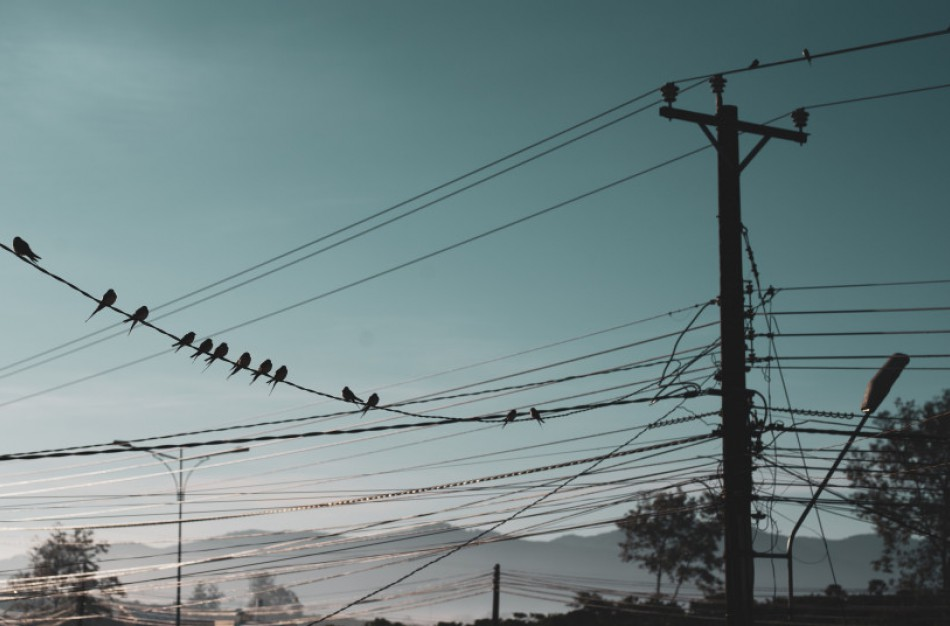 Nuo šiol - daugiau galimybių gyventojams keičiant elektros tiekėją