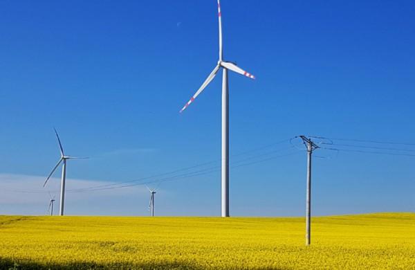 Vėjas į energetinės nepriklausomybės bures: skaidrinamos ir trumpinamos vėjo energetikos projektų vertinimo procedūros