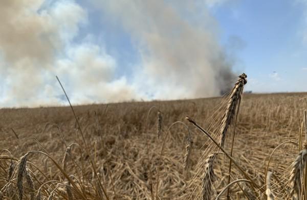 Kombainui kliudžius elektros stulpą, laukuose kilo gaisras