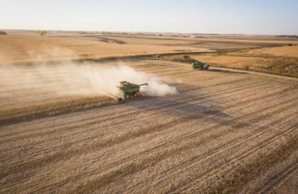 Įsibėgėjant javapjūtei VMVT pataria, kaip tinkamai sandėliuoti grūdus ir neprarasti derliaus