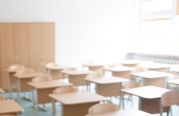 Skelbiami konkursai į Ruklos ir Kulvos mokyklų vadovų pareigas