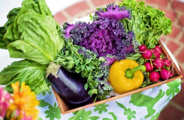 VMVT: Įsibėgėja sezoninė prekyba šviežiomis daržovėmis