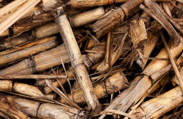 Šildymo kainoms sušvelninti bus aktyviau surenkami medienos likučiai biokurui