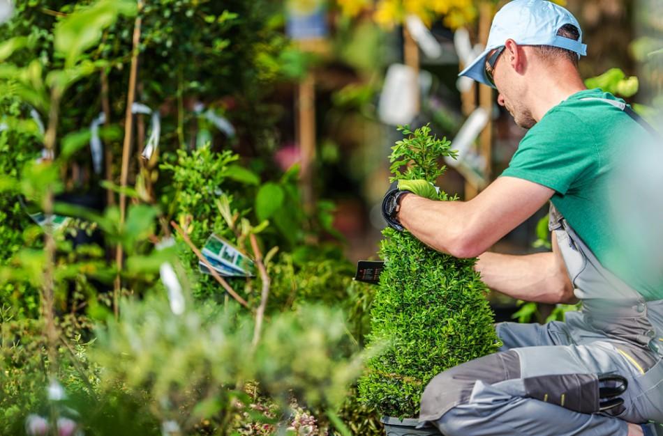 Tarp dirbančiųjų sezoninį darbą – vis daugiau užsieniečių