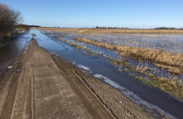 Nuo nepalankių klimato reiškinių nukentėję ūkininkai gali kreiptis lengvatinių paskolų