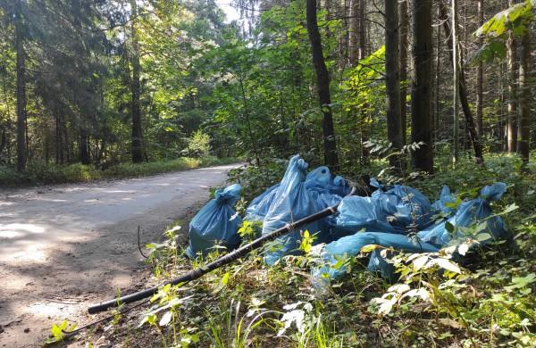 """""""Miško kuopa"""" sutelkė miškų švarai neabejingus piliečius – surinktos tonos šiukšlių"""