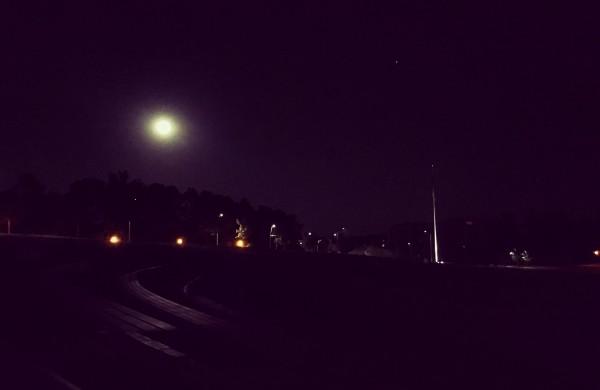 Naktinis slenis