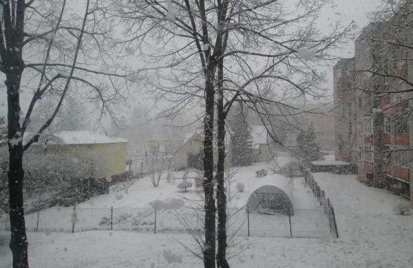Vėl žiema