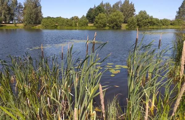 Žeimių ežeras