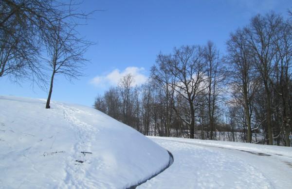 O buvo žiemos ...